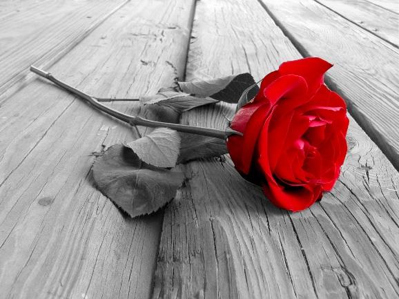 王子被玫瑰花扎了,關公主啥事? 小琴對我說,她的男人「其實」是個好男人,只要他沒那麼倒楣的話。可是只要他一倒楣,她也就跟 […]